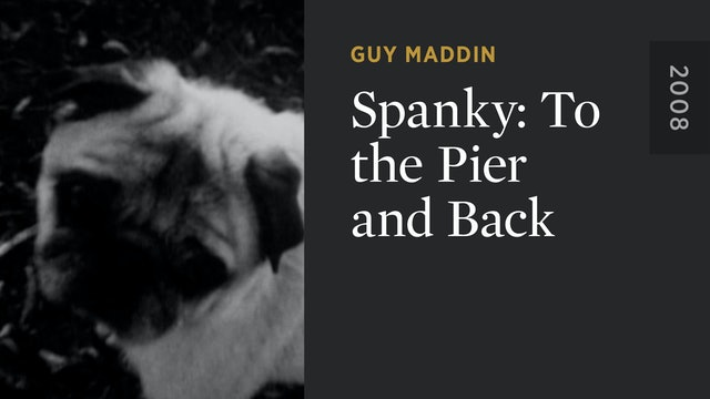 Spanky: To the Pier and Back