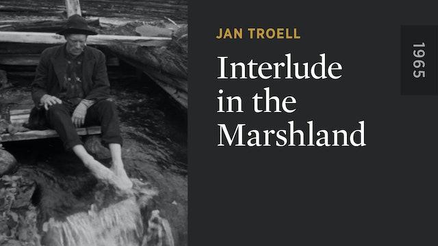 Interlude in the Marshland
