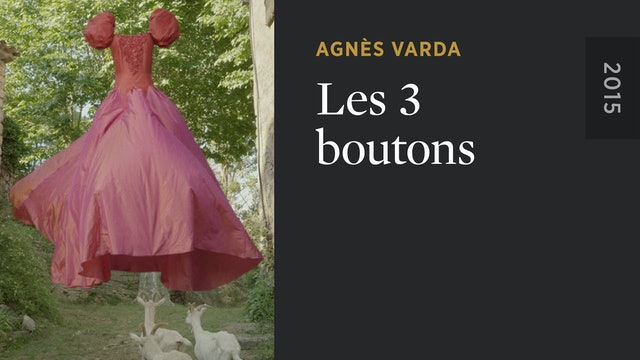 Les 3 boutons