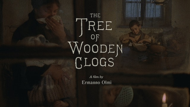 THE TREE OF WOODEN CLOGS Edition Intro