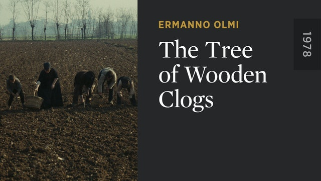 The Tree of Wooden Clogs