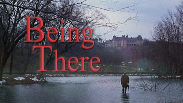 BEING THERE TV Spots