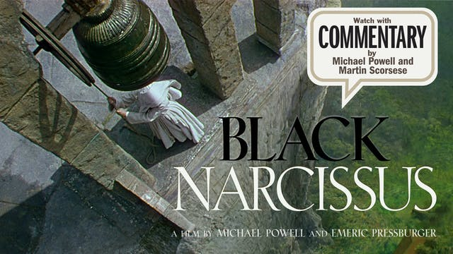 BLACK NARCISSUS Commentary