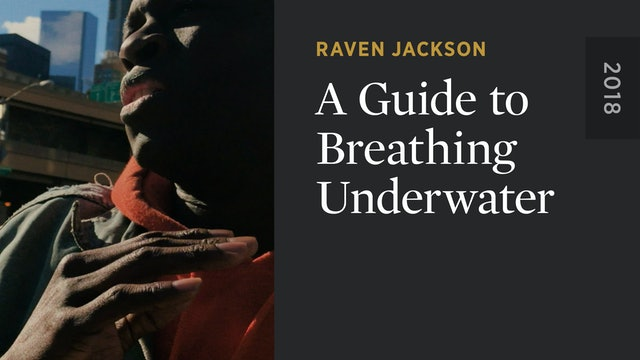 A Guide to Breathing Underwater