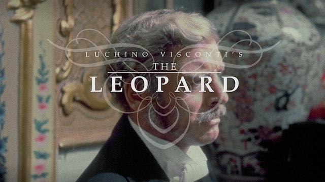 THE LEOPARD Edition Intro