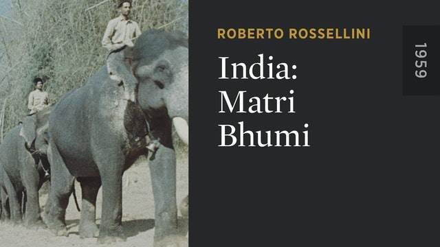 India: Matri Bhumi