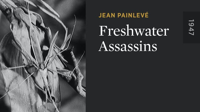 Freshwater Assassins