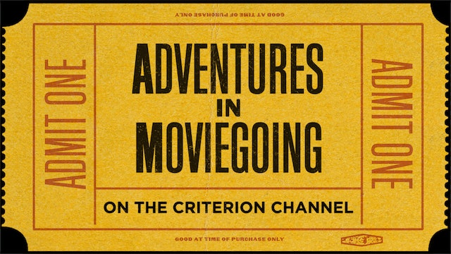 Adventures in Moviegoing