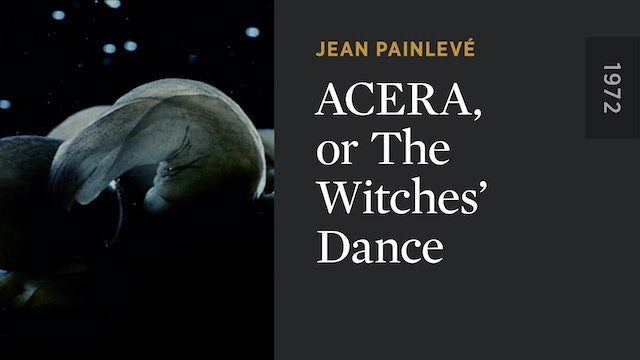 Acera, or The Witches' Dance