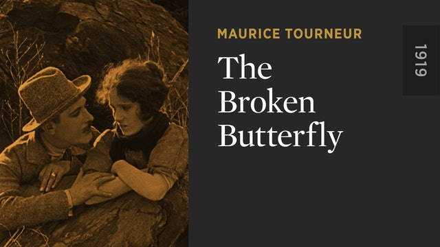 The Broken Butterfly