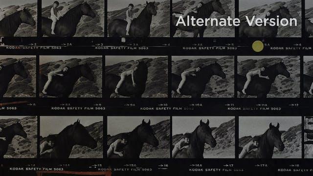 FOLLOWING: The Linear Edit