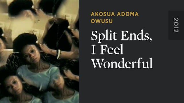 Split Ends, I Feel Wonderful