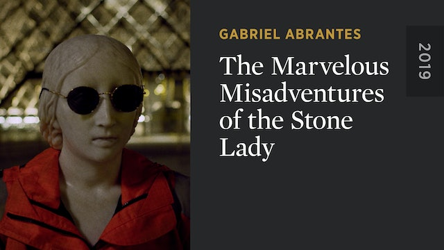 The Marvelous Misadventures of the Stone Lady
