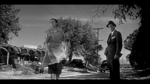 INVASION OF THE BODY SNATCHERS Commentary