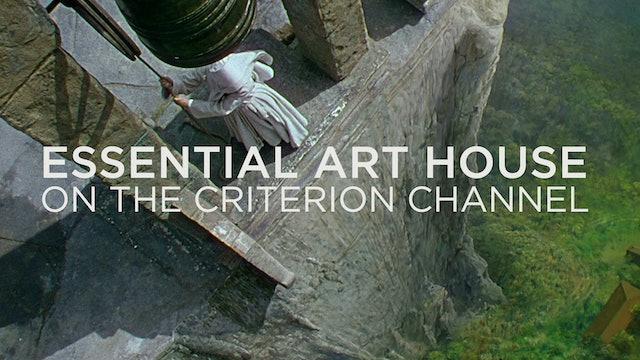 Essential Art House