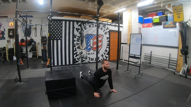 Coaching Gymnastics & Bodyweight