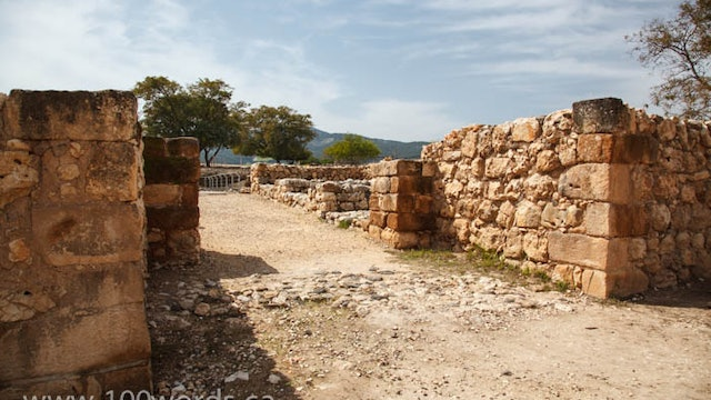100 Words - YR1 January 26 - Archaeology, Friend of the Bible