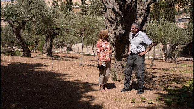 Moira Brown - Garden of Gethsemane