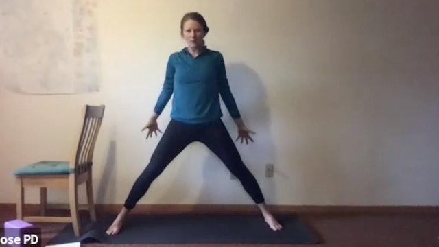 Yoga with Dana: Hip Opening (5.20.21)