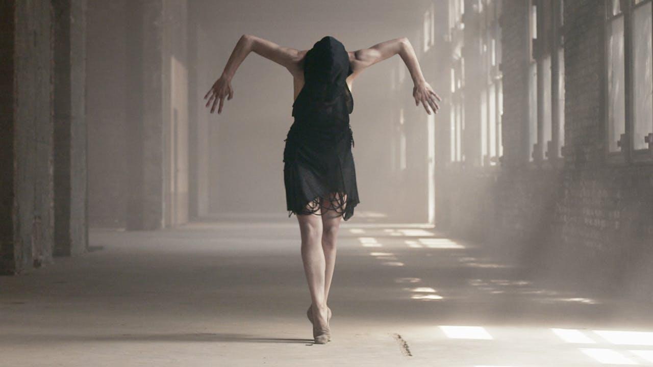 Dance on Camera 2013