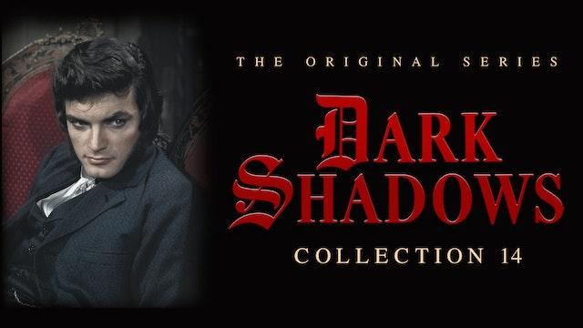 Dark Shadows - Volume 14
