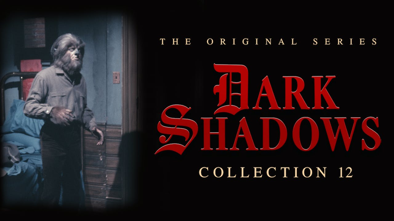 Dark Shadows - Volume 12