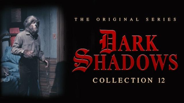 Dark Shadows - Volume 12