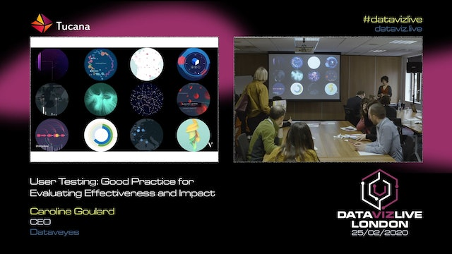 User Testing on Data Visualisation: Challenge, Impact and Good Practice