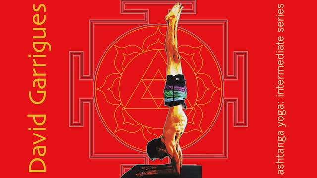 Ashtanga Yoga: A Guide to the Intermediate Series (Beginner, Intermediate, Advanced)