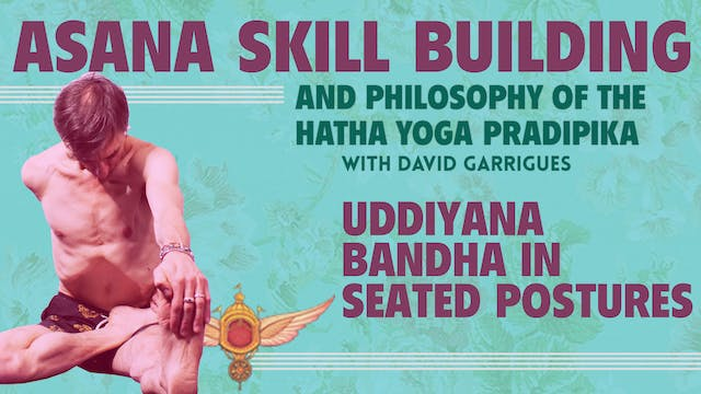 Uddiyana Bandha in Seated Postures