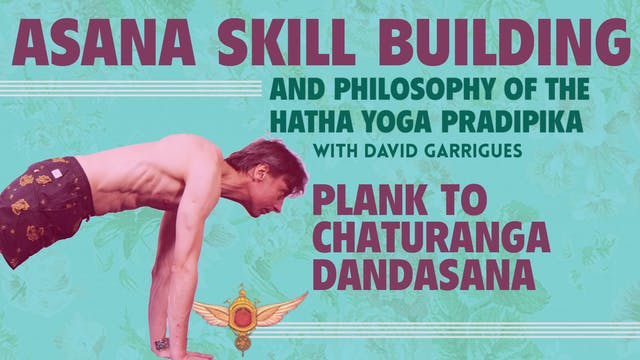 Plank to Chaturanga Dandasana