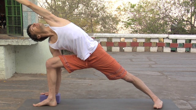 Utthita Parsvakonasana Modification (Extended Side Angle Posture)