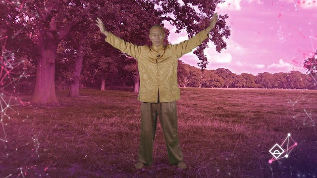 12 Min Qigong with Master Mingtong Gu...