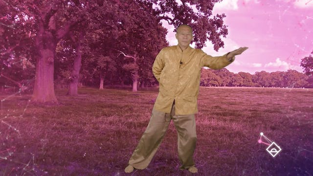 30 Min Qigong with Master Mingtong Gu...