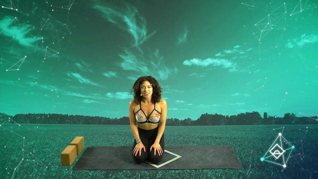NEW | 30 Min Yoga Flow with Lindsay | Flow | Dopamine