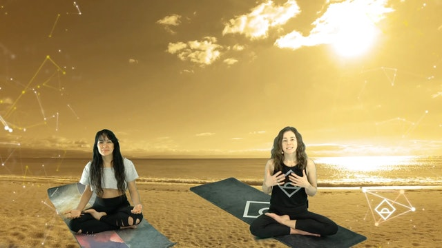 NEW | 33 Min Yoga with Ally | Gratitude | Serotonin