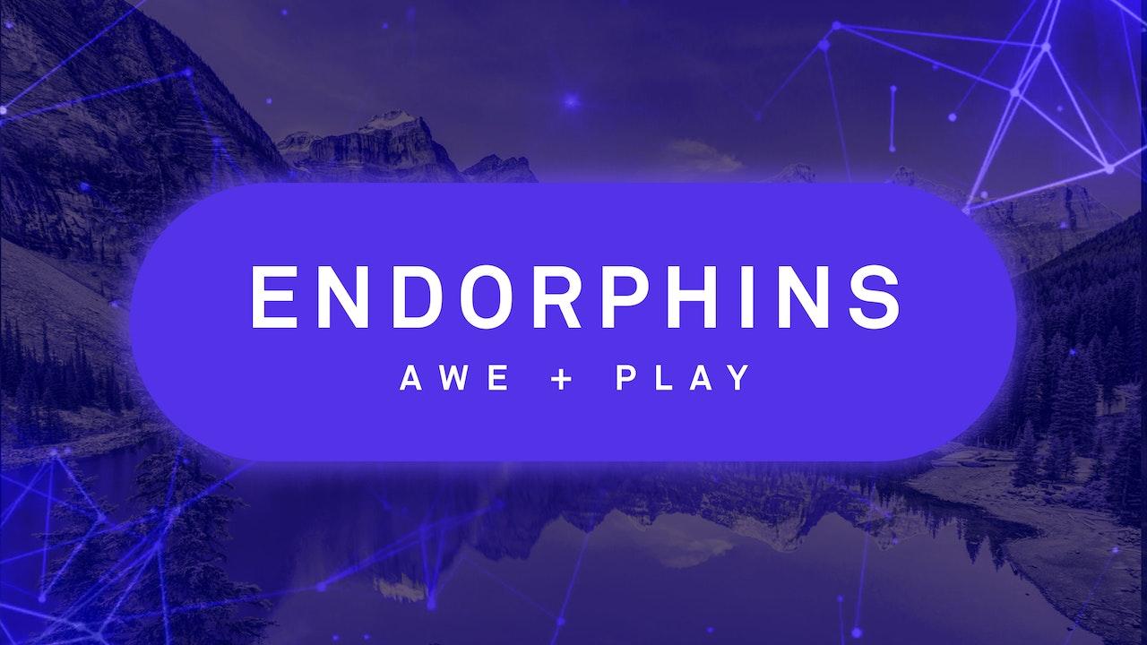 Endorphins: Awe + Play