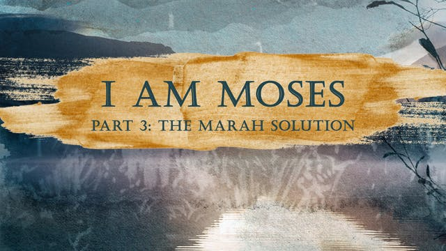 I Am Moses Pt 3 | Jimmy Evans