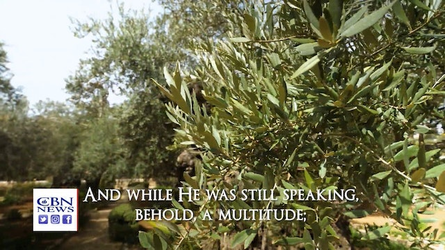 Walk Through the Bible in Jerusalem in the Places of Jesus' Passion