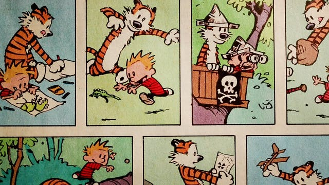 Another Calvin & Hobbes