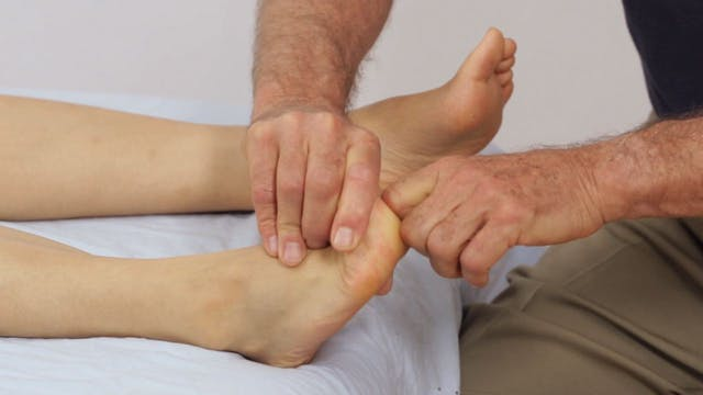 Deep Tissue Massage - An Integrated Full Body Approach: 22] Specific Strategies - Supine Position - Lower body