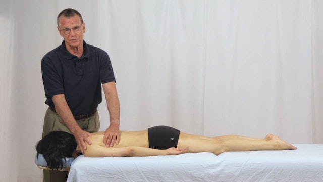 Deep Tissue Massage - An Integrated Full Body Approach: 12] Goals For Upper Back - Specific Goals - Prone Position - Mechanics Of Scapular Movement