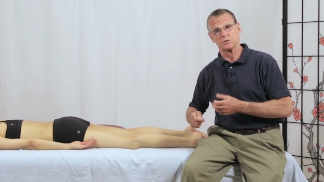 Deep Tissue Massage - An Integrated Full Body Approach: 8] Mechanics - Stroke Intention - Anchor And Stretch