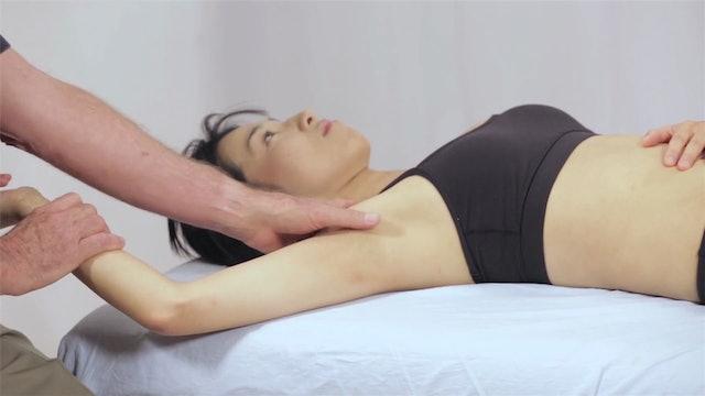 Deep Tissue Massage - An Integrated Full Body Approach: 9] Mechanics - Stroke Intention - Compartment Separation