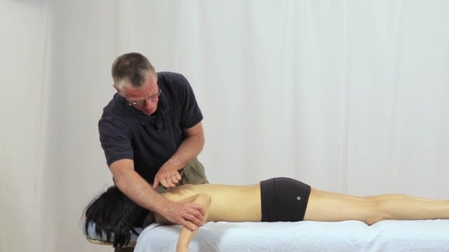 Deep Tissue Massage - An Integrated Full Body Approach: 13] Specific Strategies - Prone Position - Upper Thoracic And Scapula
