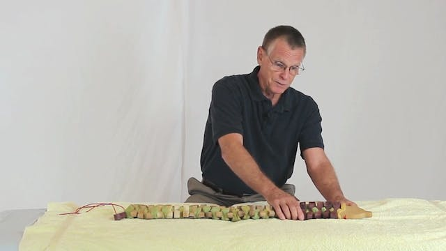 Deep Tissue Massage - An Integrated Full Body Approach: 15] Introduction To Vertebral Movement