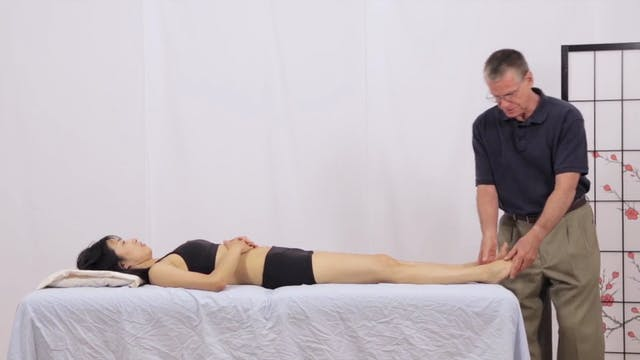 Deep Tissue Massage - An Integrated Full Body Approach: 21] Specific Goals - Supine position - Lower Body