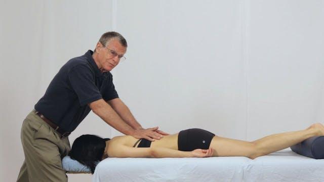 Deep Tissue Massage - An Integrated Full Body Approach: 3] Biomechanics