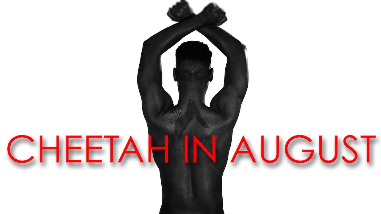 Cheetah In August
