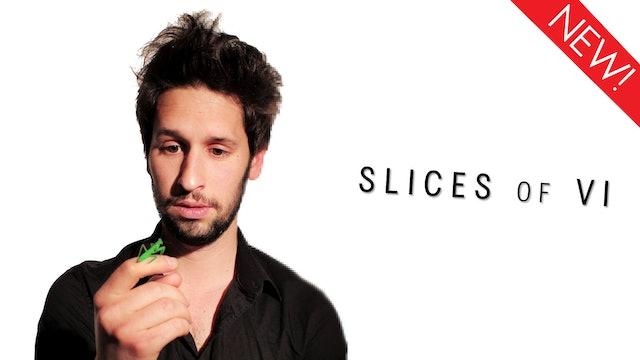 Slices of Vi